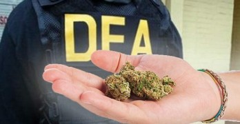 DEA Could Change Federal Status of Marijuana by July