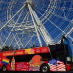 Florida Dolphin Tours Launches New City Sightseeing Orlando Service