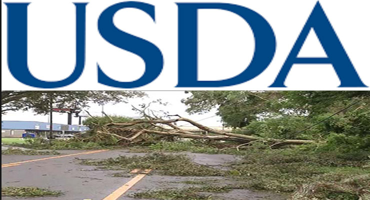 USDA Approves D-SNAP for Central Florida Disaster Counties